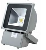 Прожектор светодиодный СД-02-100W-73