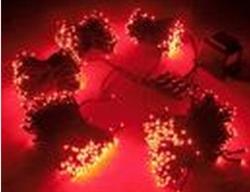 Гирлянда светодиодная LED-SP-20х5-24V-220V-R - фото 6592