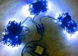 Гирлянда светодиодная LED-BS-20х3-24V-220V-B