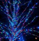 Гирлянда светодиодная LED-SP-20х3-24V-220V-RGB