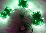 Гирлянда светодиодная LED-SP-20х3-24V-220V-G-C